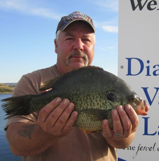Redear record falls at diamond valley for Diamond valley fishing report