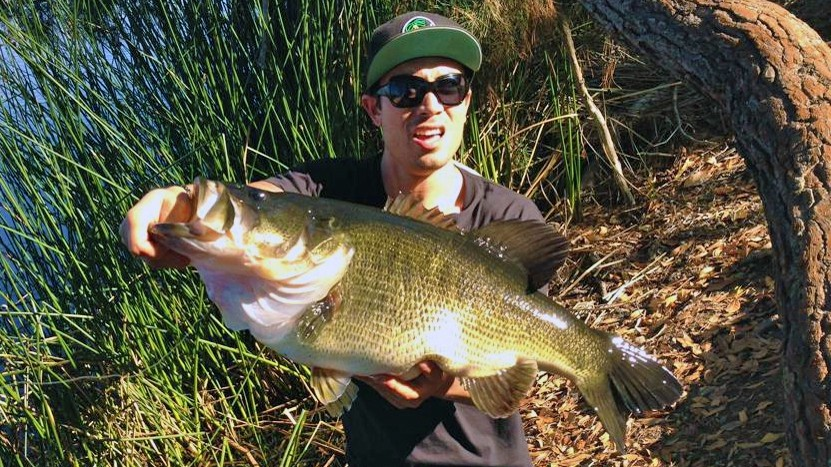 16 2 pound bass caught by swimbait angler for Freshwater fishing san diego