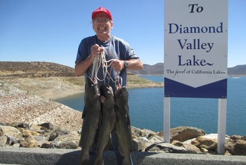 Diamond valley lake fish report 9 28 14 for Diamond valley lake fishing report