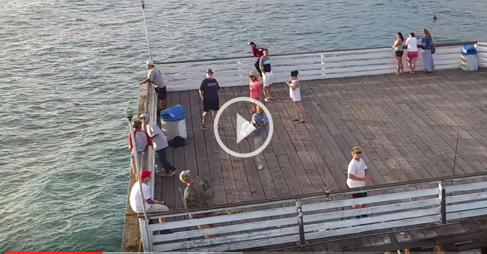 Video pier fisherman snipes drone with wicked cast for Drone surf fishing