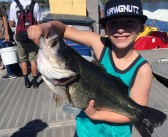 One of the year's biggest bass highlights action from Lake Murray
