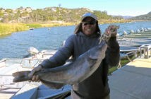 Top 25 biggest largemouth bass ever caught for Lake hodges fishing report