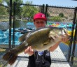 Dillon Klais with a 12 lb 9 oz bass out of Santee Lakes'  lake 5 on a swimbait