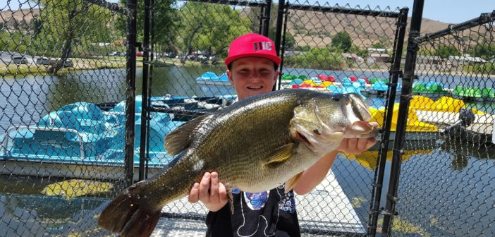 Santee Lakes Fish Report – 6/27/16