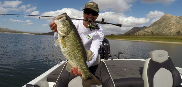 FLW Series Champion now offering guided bass fishing trips