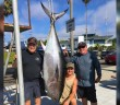 Greg Commentz' 262 lb local bluefin tuna caught on July 8th off the coast of Oceanside
