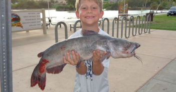 AJ Trudell, age 7, caught this 9 lb 8 oz catfish from lake 7