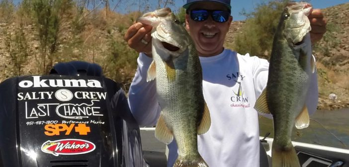San diego fishing information news reports and forums for Lake elsinore fishing report