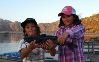 tristan-and-gracie-cat-on-mackerel-poway