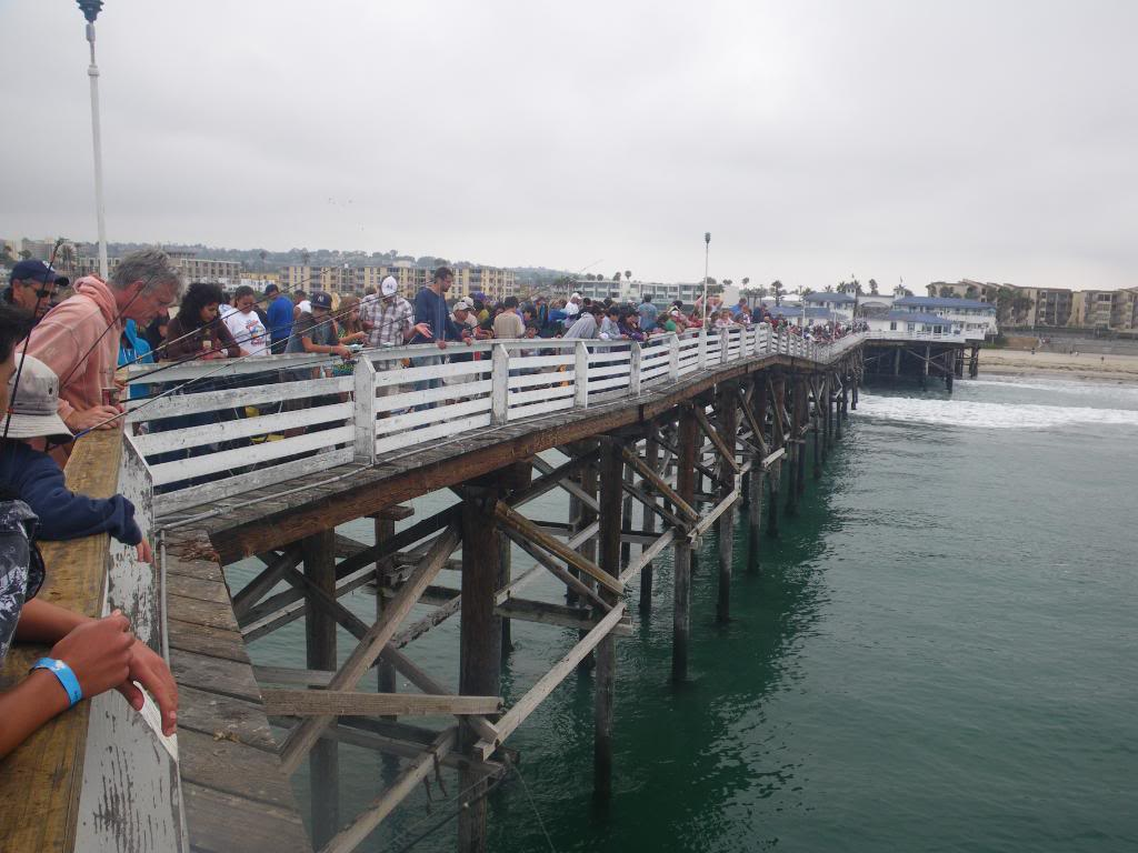 3rd annual kids fishing classic crystal pier pb san for Crystal pier fishing