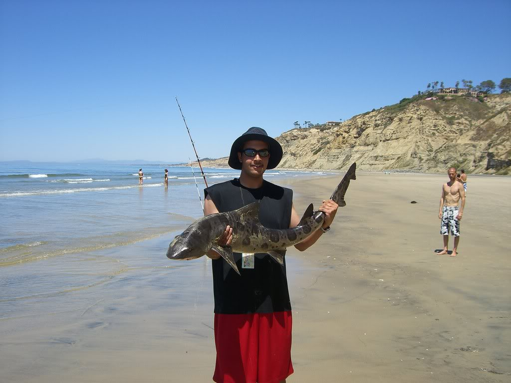 Surf fishing not bad on sunday 4 13 san diego fishing forums for Surf fishing san diego