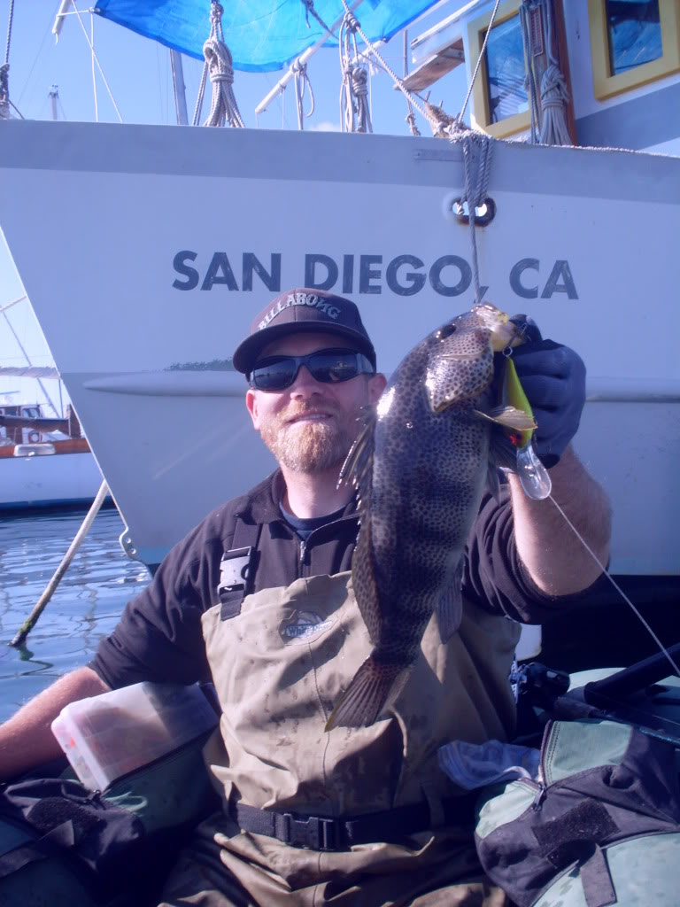 Winter bay bass fishing san diego fishing forums for Bass fishing san diego