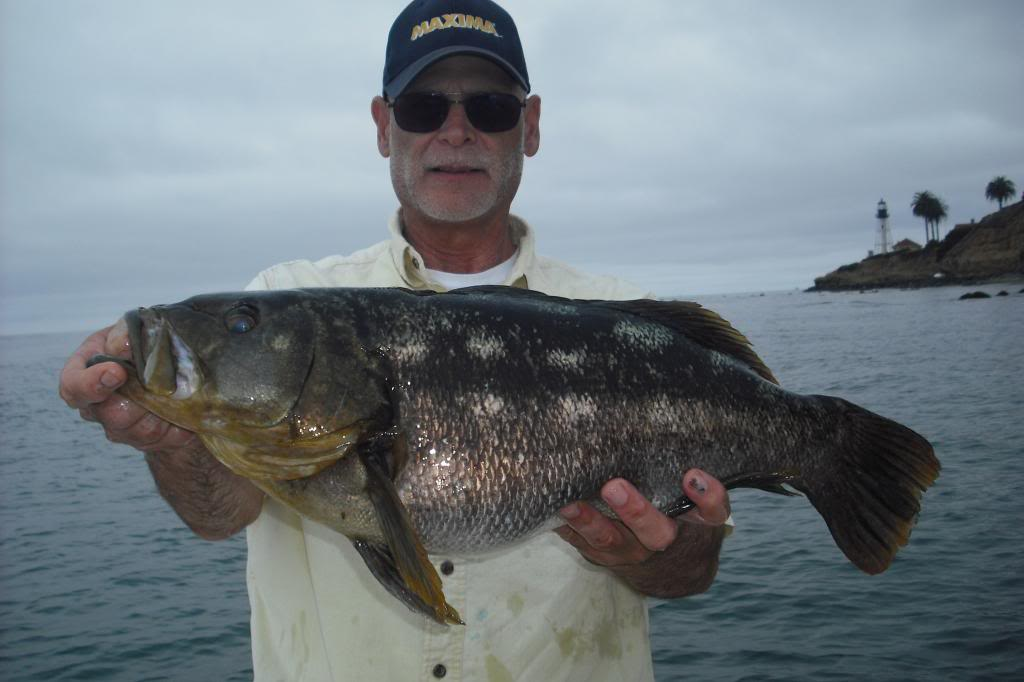July 5 2013 bass report san diego fishing forums for Bass fishing san diego