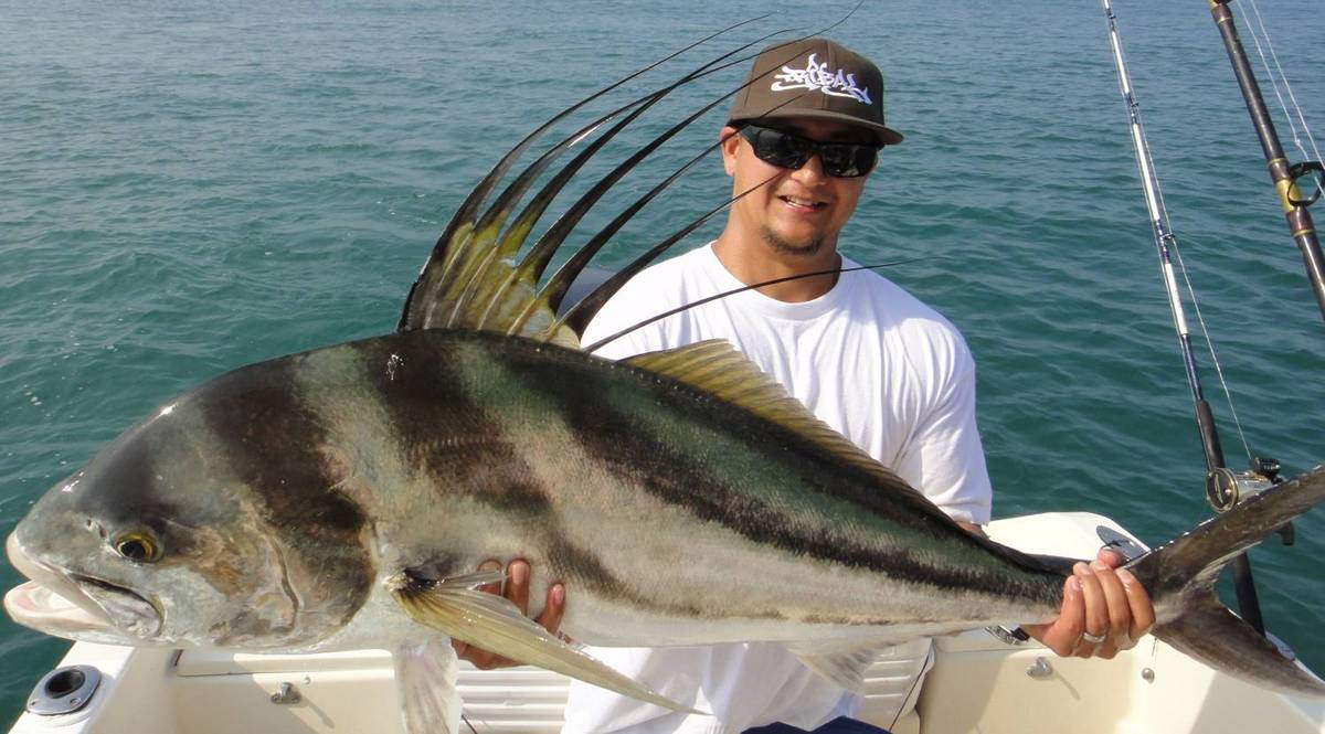 Rippin rooster fish lips in costa rica san diego fishing for Rooster fish pictures