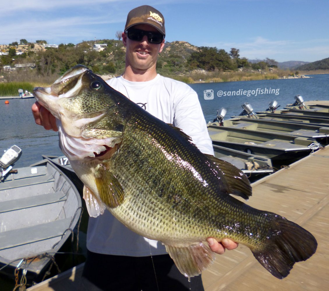 16 3 pound bass caught from local lake yesterday 2 26 for Bass lake fishing