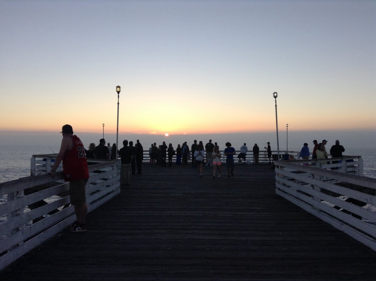 Crystal pier february 6 2015 san diego fishing forums for Crystal pier fishing