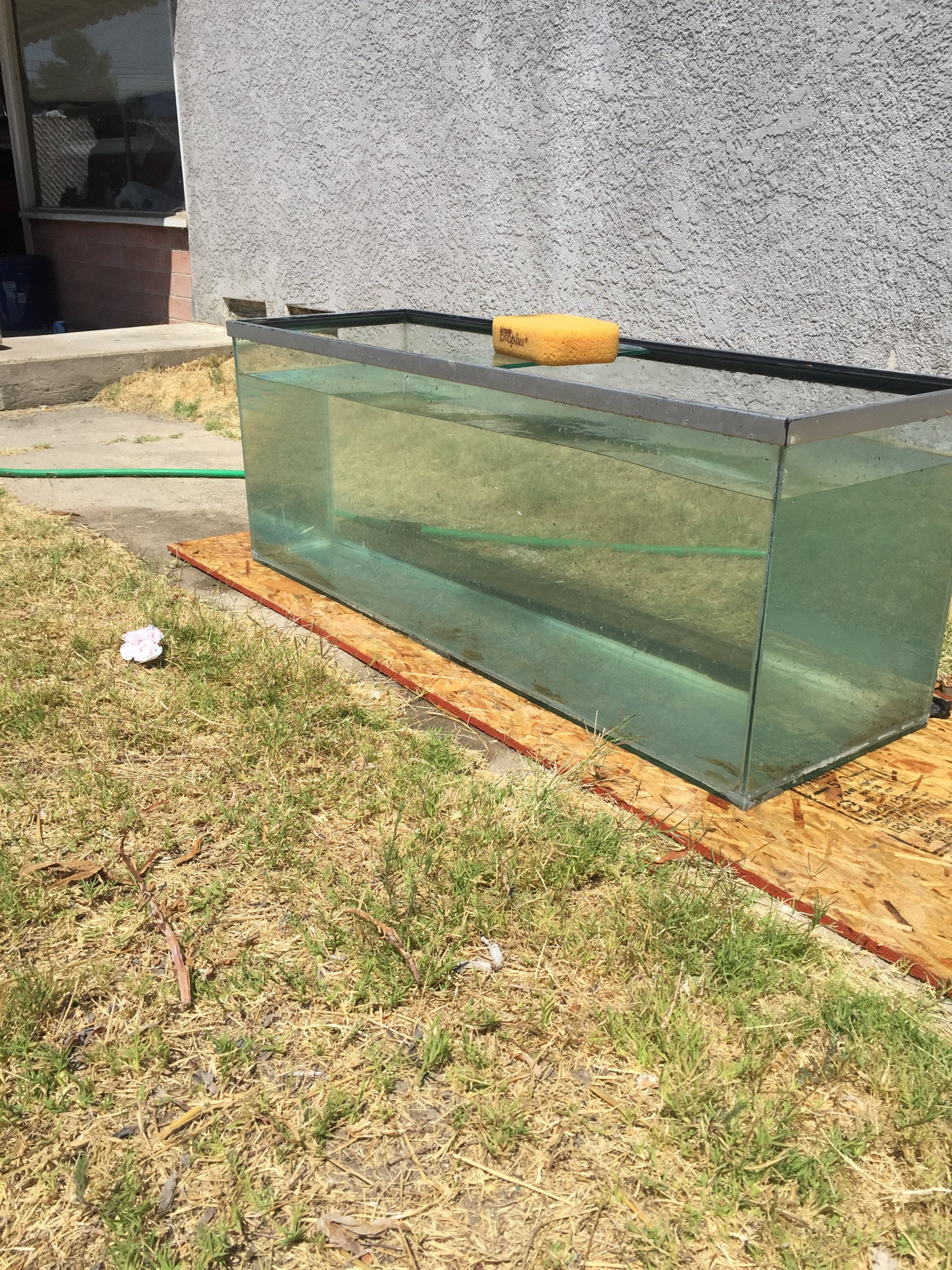 For Sale - 100 gallon fish tank | San Diego Fishing Forums