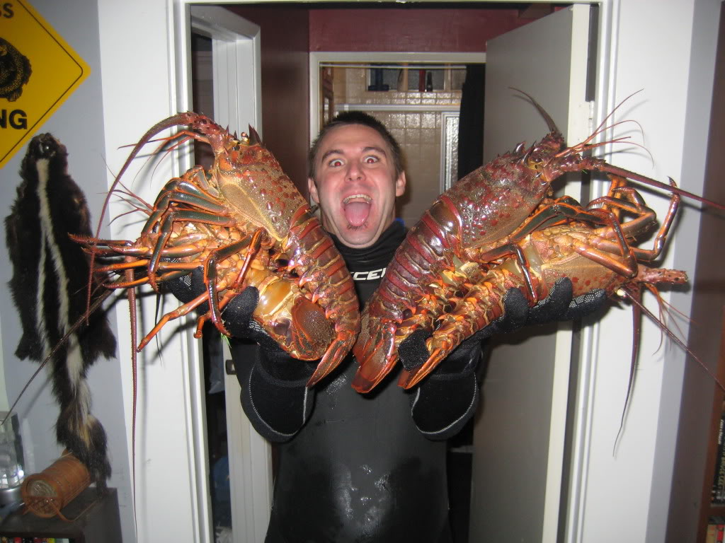Free diving san diego fishing forums for Lobster fishing san diego