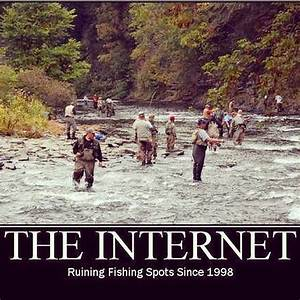 internet fishing.jpg