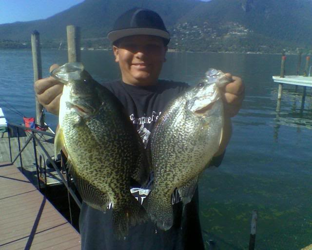 Clear lake crappie hey roy m check these puppies san for Lake hodges fishing