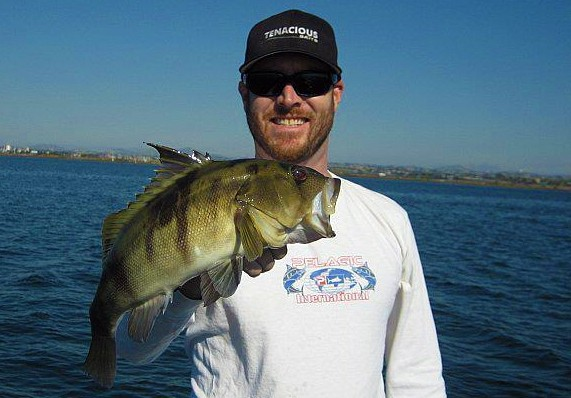 San diego bay from the south to the mouth for Bass fishing san diego