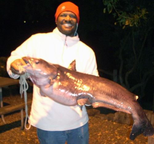Channel Catfish Record