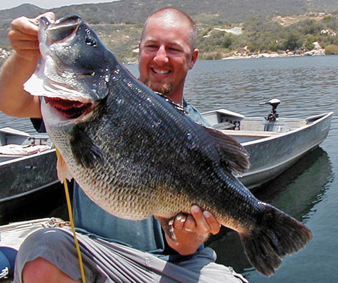 Biggest Large Mouth Bass Ever Caught 72