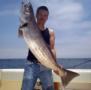 Saltwater fish report from seasons sportfishing for Saltwater fishing report
