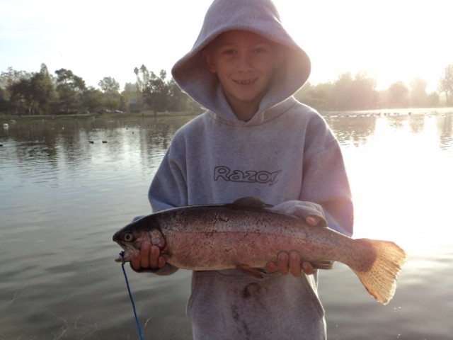 Santee lakes fish report trout opening weekend november 2nd for Santee lakes fishing report