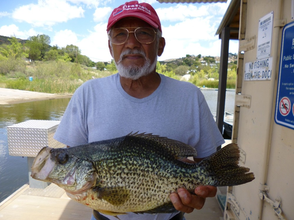 Trout fishing good crappie spawning at wohlford for Lake wohlford fishing report