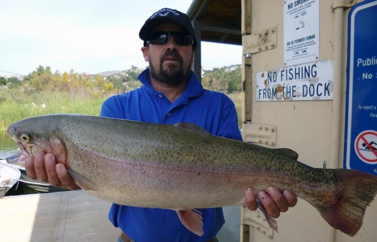 Lake wohlford fish report 12 27 14 for Lake wohlford fishing report