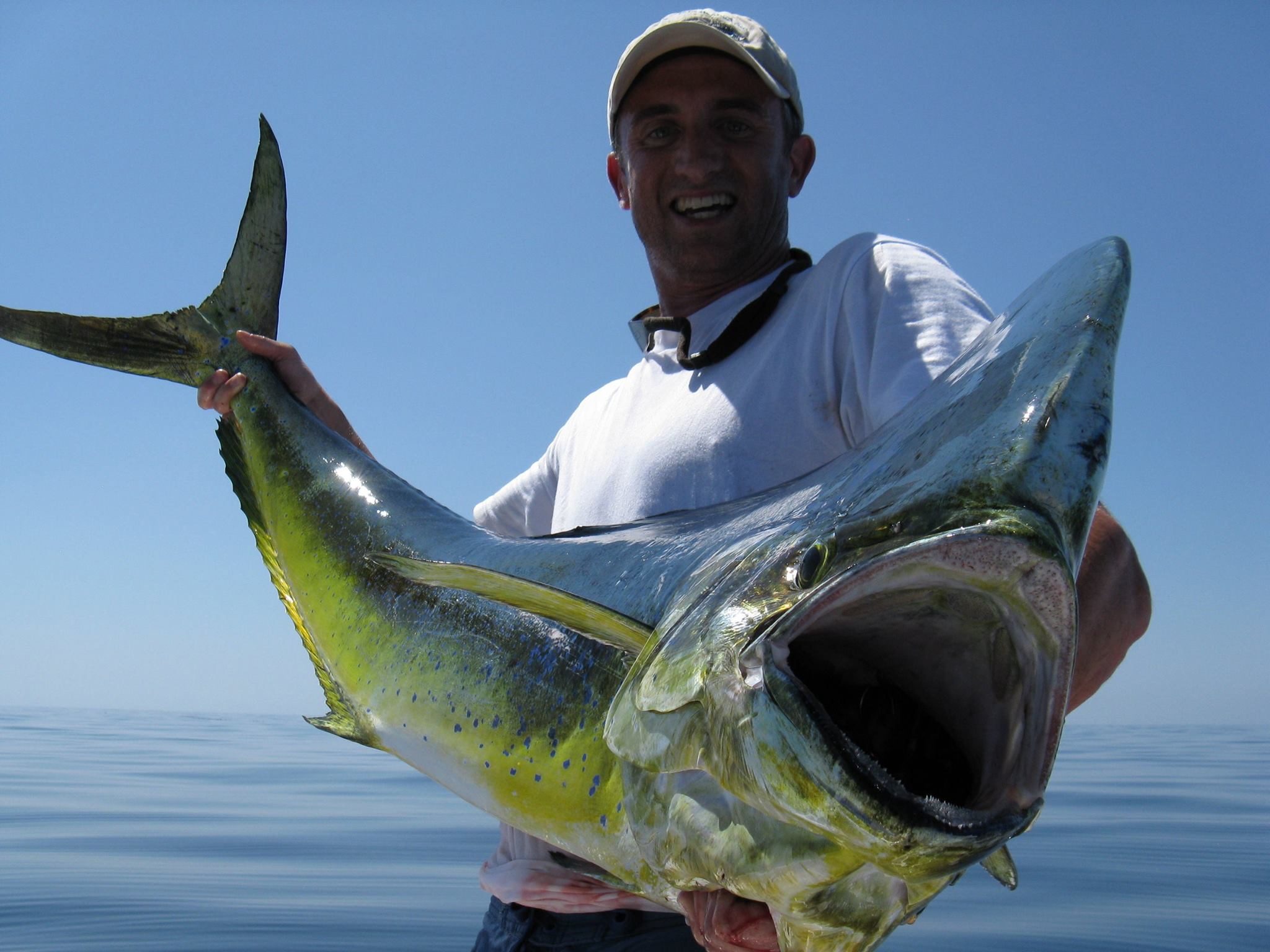 San diego fishing guides for Bass fishing san diego