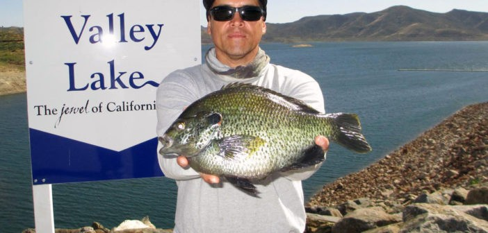 Record redear sunfish caught at diamond valley for Lake hemet fishing