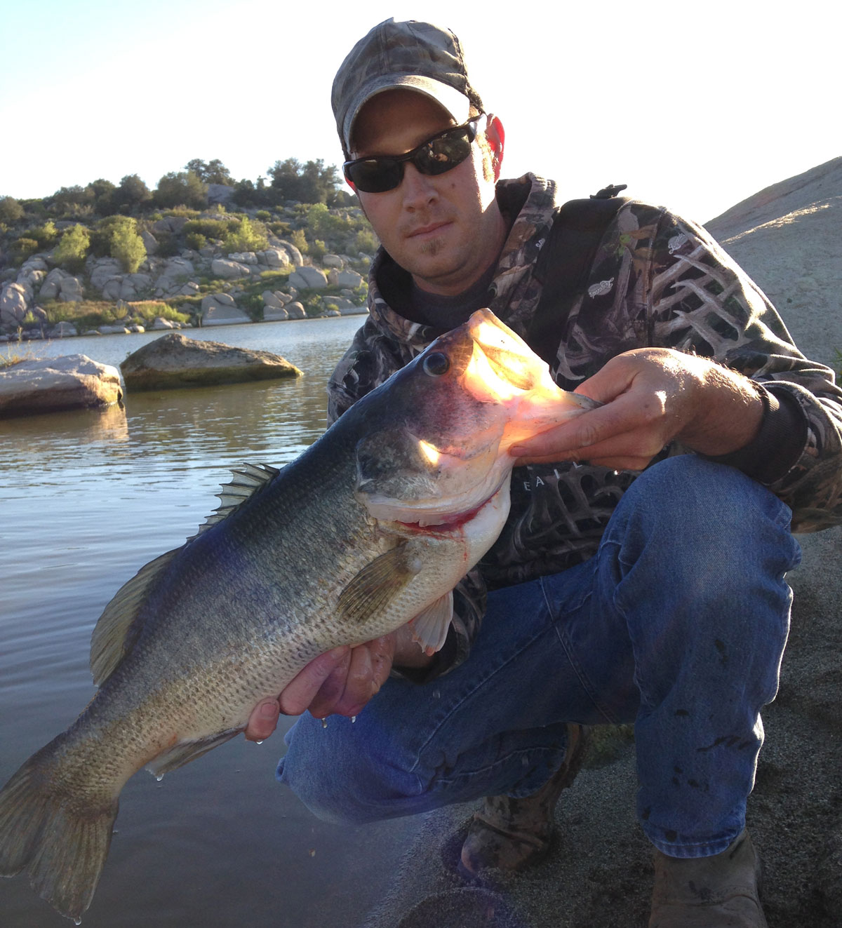 Lake morena fish report 6 20 15 for Lake fishing report