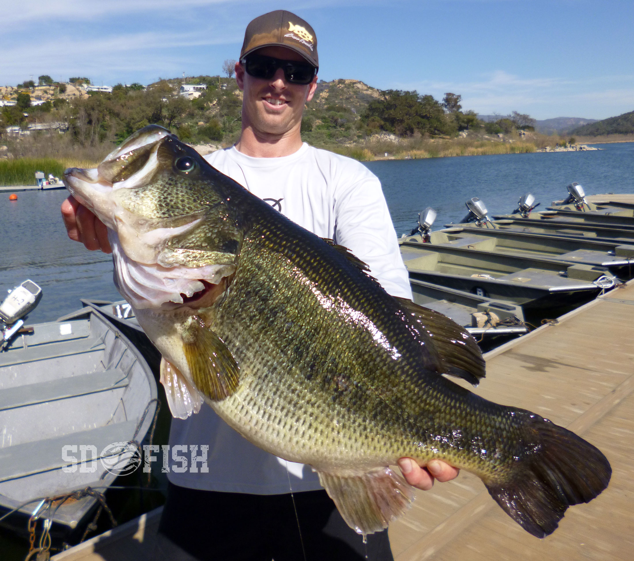 Monster alert 16 3 pound bass caught at local lake for Bass fishing san diego