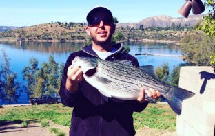 Robert Daoud hauled in a new lake record at Lake Jennings on 2/12/16, an 8 lb 2 oz wiper