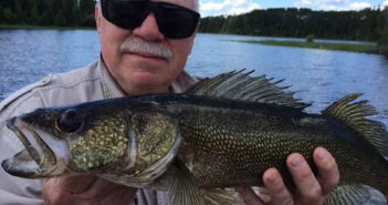lac-seul-walleye