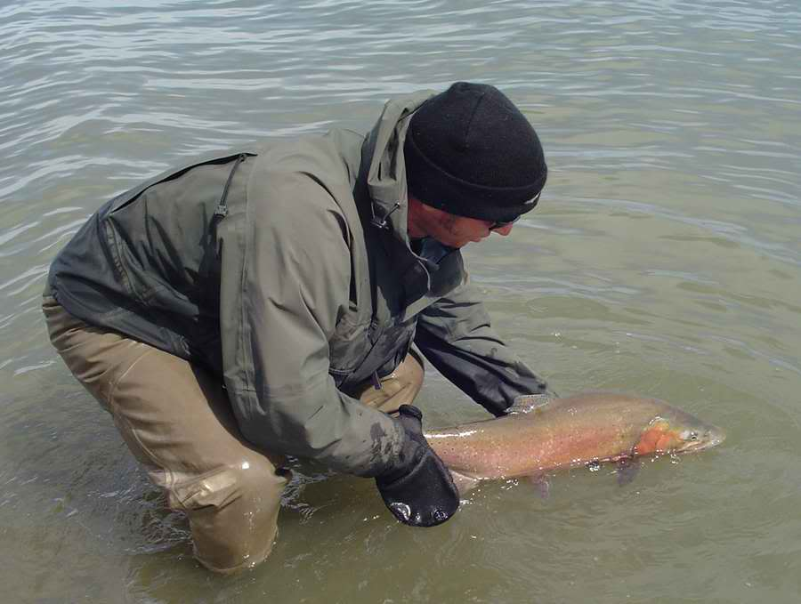 bruce-smith-lahontan-cutthroat-trout