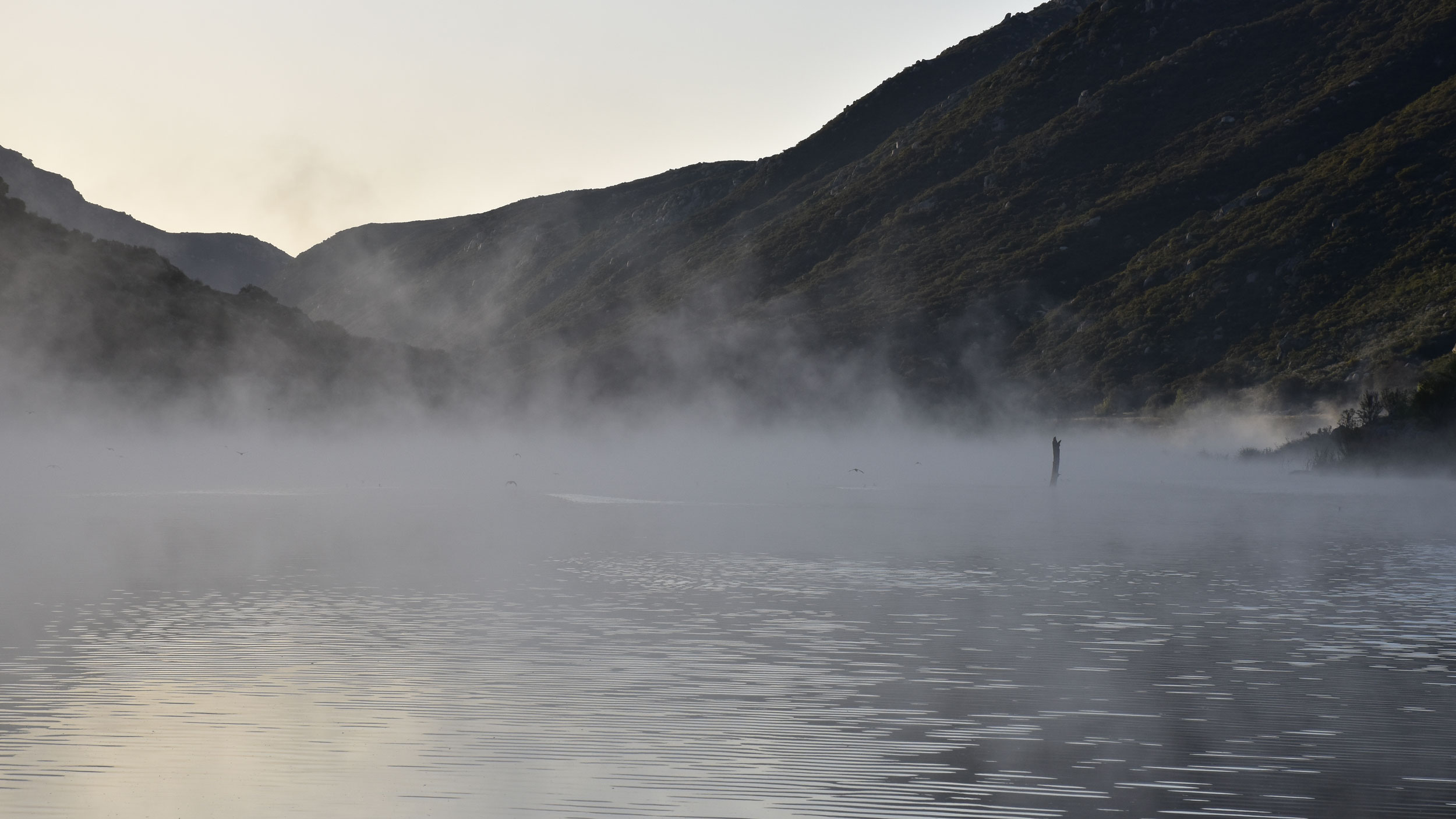 Photo of foggy steam at Lake Barrett